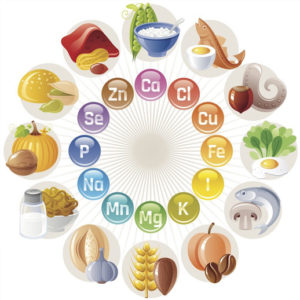 Essential Vitamins & Minerals